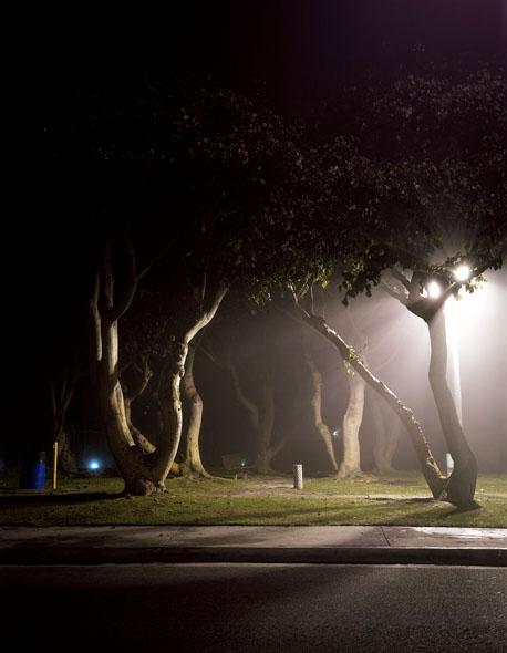 Friedman_night_09