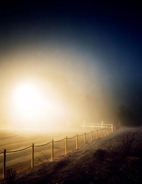 Friedman_night_10