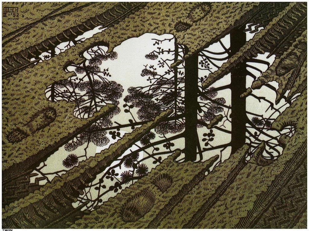 mc escher essays 2 escher's work: spatial structure, flat surface structure and the relationship between them  most of escher's work done after 1937 have a.
