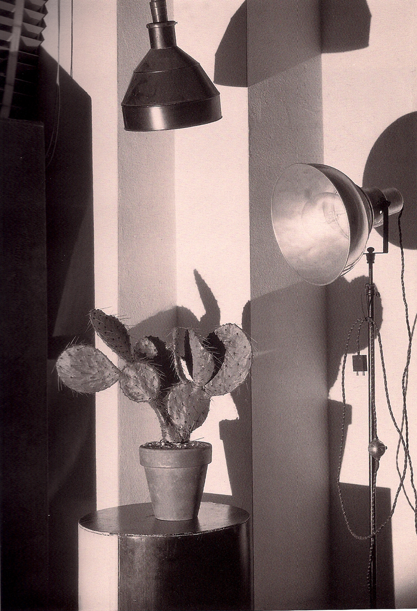'Cactus and the Photographer's Lamp' Charles Sheeler