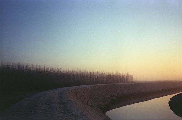 Luca Bartolato, curves