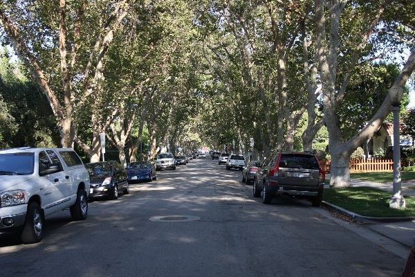 Malcom in the Middle street, 600 x 400