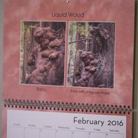 calendar-sm