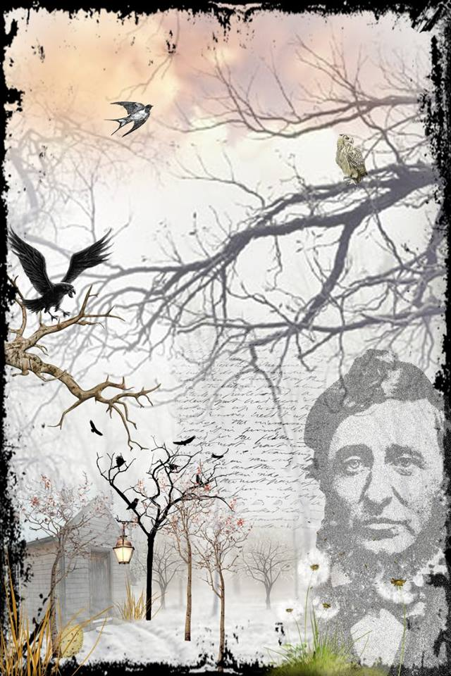 Susan Yount, Henry David Thoreau as The Hermit