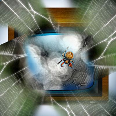 spider-tv-sm