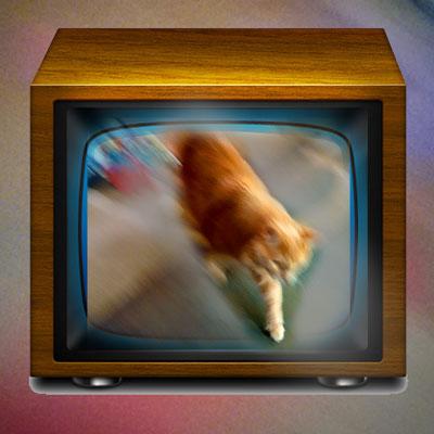 tv-cats-400